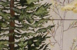 Fresh Pine and Aspen mural 24x12