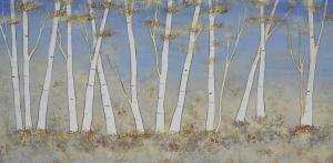 Spring Birch Grove